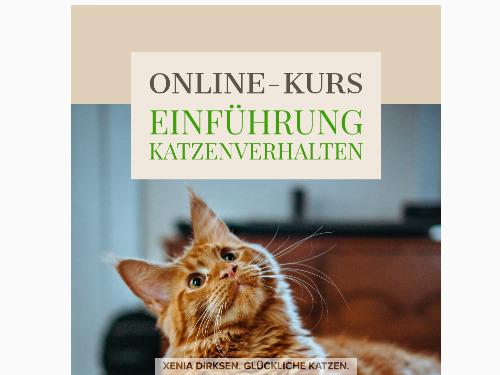 """Online-Videokurs """"Einführung Katzenverhalten"""" - auf Triviar"""