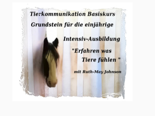 Tierkommunikation Basis-Kurs 24/25 April 2021 - auf Triviar