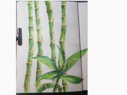 Bambus-Aquarell-Workshop 3 teilig - auf Triviar