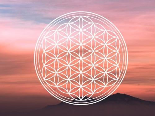 mediale Hypnose - auf Triviar