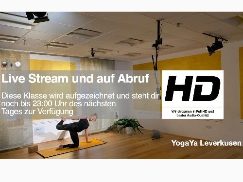 Yoga Online Stufe 1 Anfanger