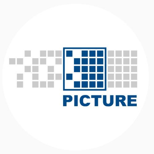 PICTURE GmbH - auf Triviar